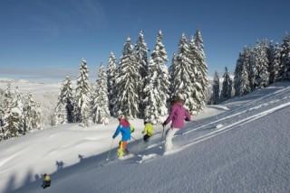 ski-lebeau-h13-1-283