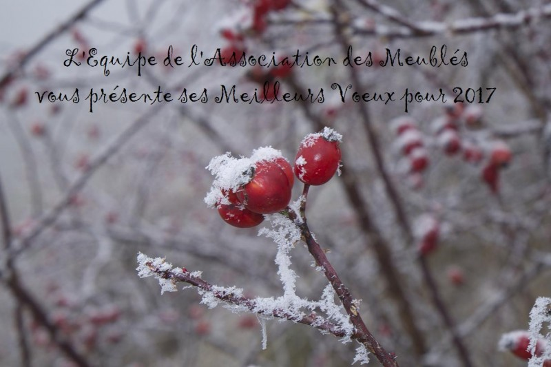hiver-fruits7-189