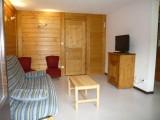 location-appartement-centrevillage-laclusaz-montagne-ski-Parnasse 517