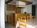 location-appartement-laclusaz-centre-village-skis-montagne-parnasse517-