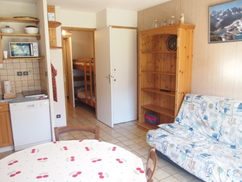 locationappartement-talgoa-routedesconfins-vuemontagne-laclusaz